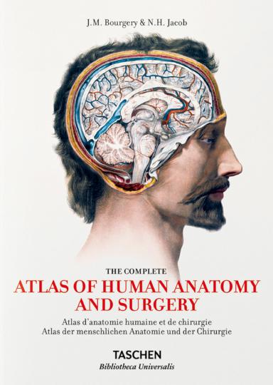 Anatomie - Atlas von Bourgery
