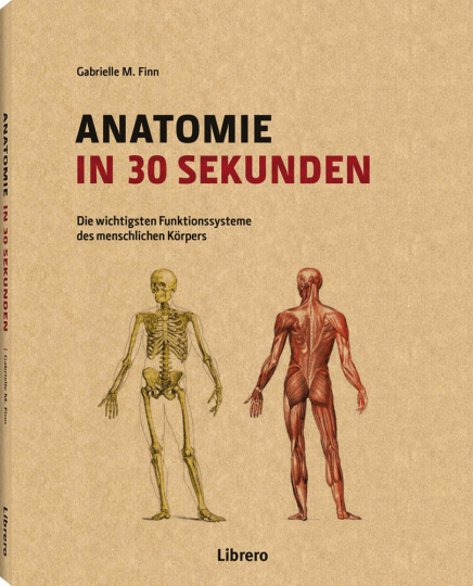 Anatomie in 30 Sekunden.