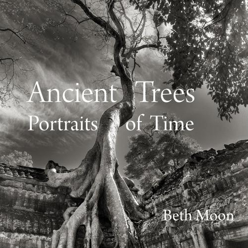 Ancient Trees. Portraits of Time. Alte Bäume. Porträts der Zeit.
