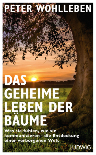 Das geheime Leben der Bäume.