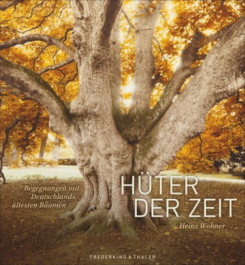 Hüter der Zeit. Deutschlands älteste Bäume.