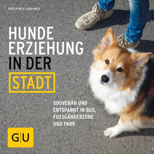 Hundeerziehung in der Stadt. Souverän und entspannt in Bus, Fußgängerzone und Park.