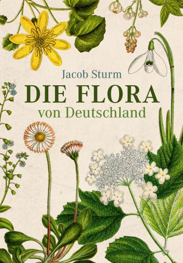 Jacob Sturm. Die Flora von Deutschland.
