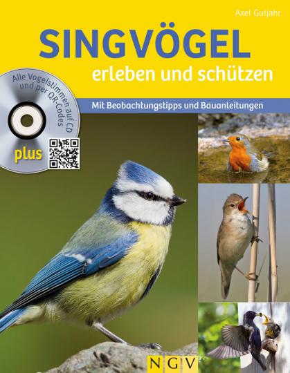 Singvögel erleben und schützen. Mit Beobachtungstipps und Bauanleitungen.