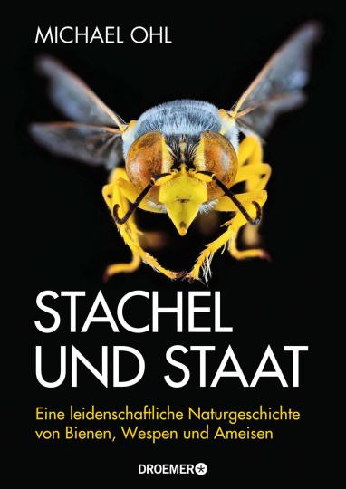 Stachel und Staat. Eine leidenschaftliche Naturgeschichte von Bienen, Wespen und Ameisen.