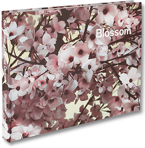 Thomas Demand. Blossom. Signiert.