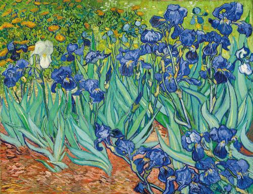 Vincent van Gogh. Iris (Schwertlilien). 1889.
