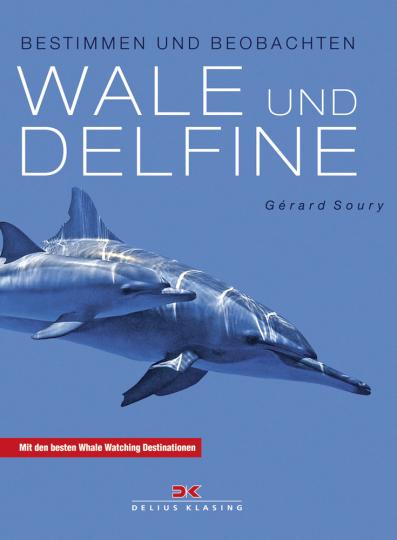 Wale und Delfine. Bestimmen und beobachten.