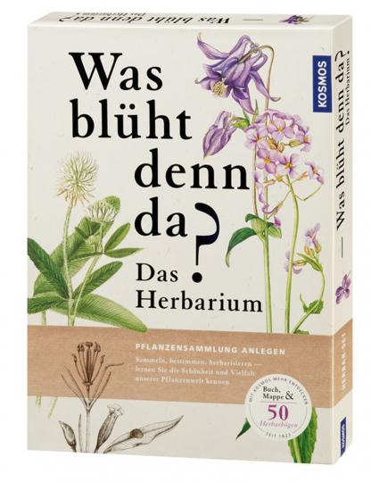 Was blüht denn da? Das Herbarium. Pflanzensammlung anlegen.