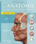 Die Anatomie des menschlichen Körpers Bild 1