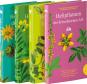 Paket Heilpflanzen. 4 Bände. Bild 1