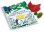 Sammelbuch für Blumen und Blätter. Bild 1