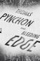 Thomas Pynchon. Bleeding Edge. Bild 1