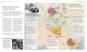 Der Zweite Weltkrieg in Karten. Bild 2