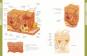 Die Anatomie des menschlichen Körpers Bild 2
