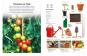 Die kleine Gartenschule. Obst- und Gemüseanbau für Einsteiger. Bild 2