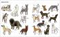 Große Hunde, kleine Hunde. Alle Hunde dieser Welt. Bild 2