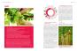 Handbuch Bio-Obst. Sortenvielfalt erhalten. Ertragreich ernten. Natürlich genießen. Bild 2