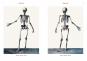 Anatomie - Atlas von Bourgery Bild 3