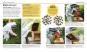 Das Bienen Buch. Bienen verstehen, schützen und halten. Bild 3