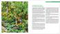 Giftfrei gärtnern. Die besten Methoden und Tipps für einen naturnahen Garten ohne Chemie. Bild 3