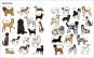 Große Hunde, kleine Hunde. Alle Hunde dieser Welt. Bild 3