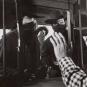 Jesse James Box. DVD. Bild 3