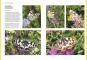 Das große BLV Handbuch Insekten. Über 1360 heimische Arten, 3640 Fotos. Bild 4