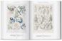 Ernst Haeckel. Kunst und Wissenschaft. Bild 4