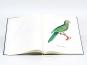 Christian Ludwig Brehm. Monographie der Papageien. Bild 5