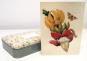 Grußkartenbox »Maria Sibylla Merian«. Bild 5